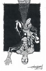 Spider-Man - BW Print